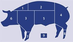 Pork meat cuts knh