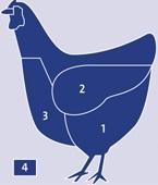 Poultry Hen meat cuts